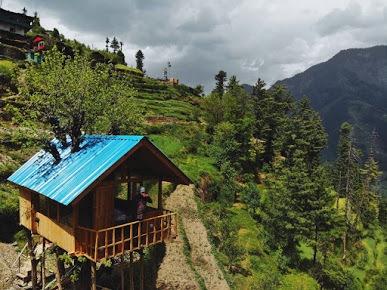 1136-treehouse-in-jibhi 1