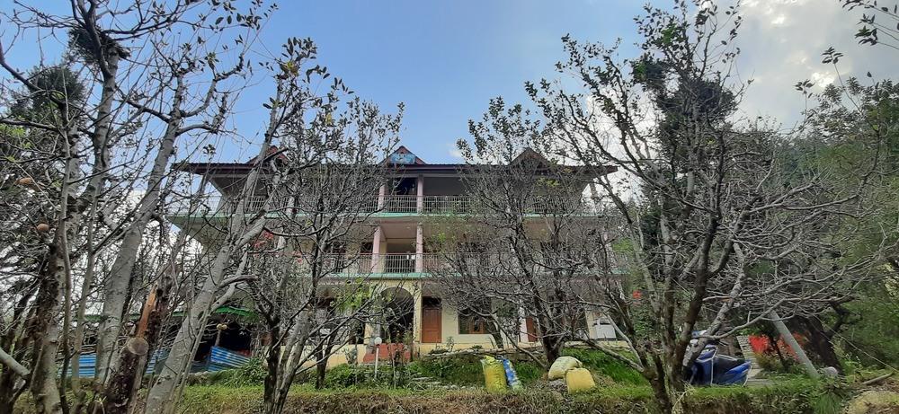 1267-homestay-in-manali 1
