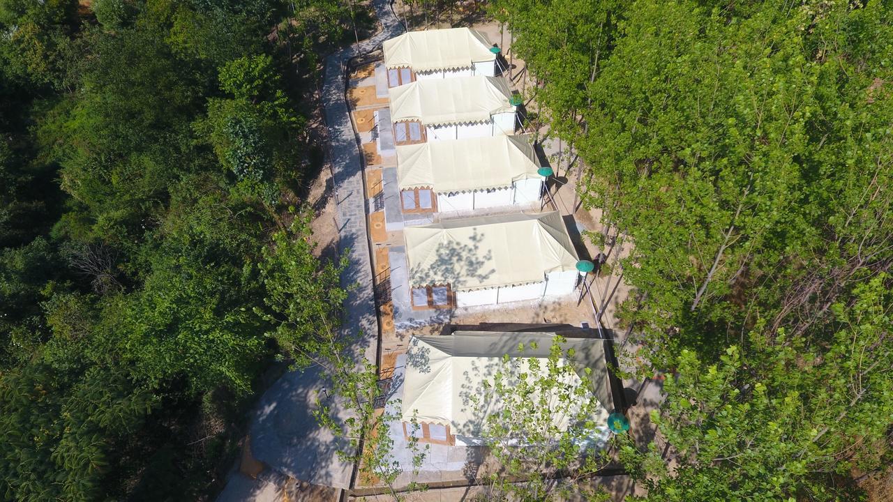 1503-campsite-in-dharamshala devbhomi-farm1