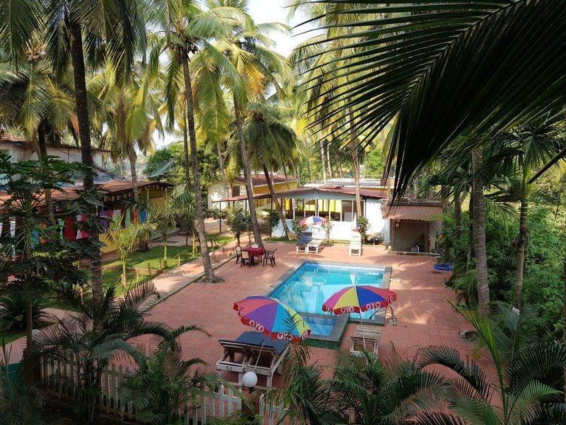 3319-resort-in-morjim-goa 1
