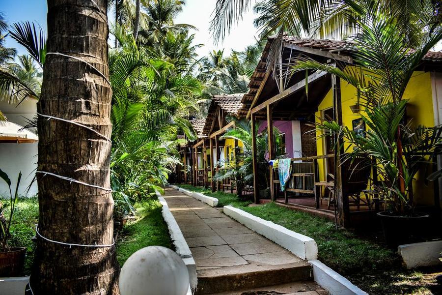 3321-resort-in-morjim-goa 1