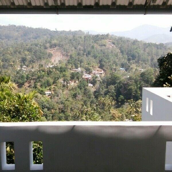 4128-villa-in-munnar 1