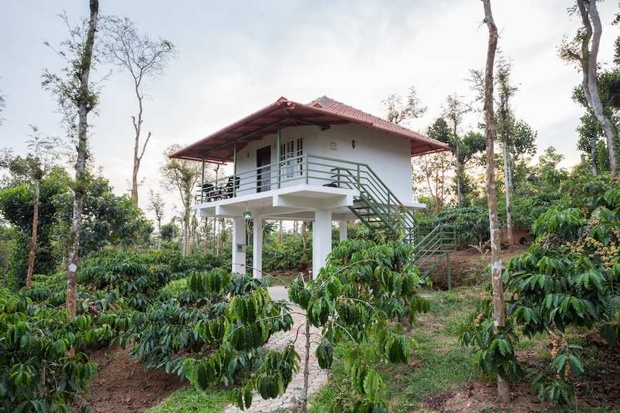 4320-resort-in-wayanad 1